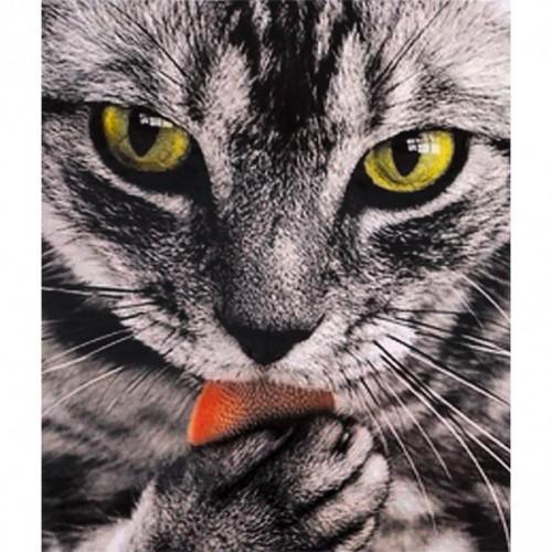"Картина по номерам ""Кот"" 40*50см"