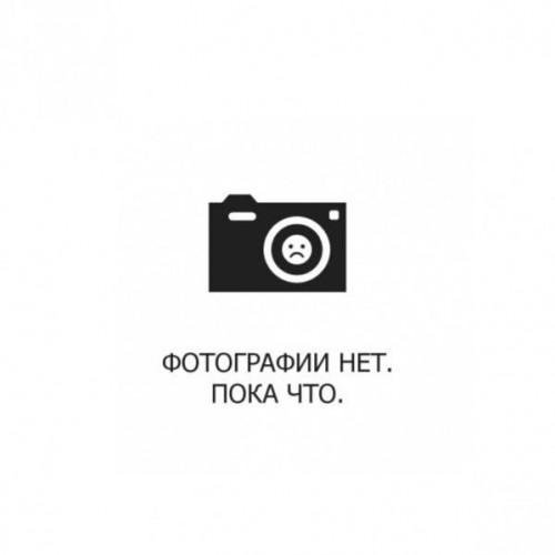 """GO90/83 Шарики 10' (26см) """"Пастель"""" с рисунком """"Gemar"""" Италия"""