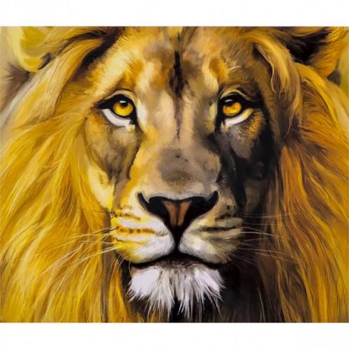 """Картина по номерам """"Портрет льва"""" 40*50см"""
