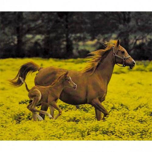 """Алмазная живопись 40*50см """"Лошадь с малышом"""" 9+"""