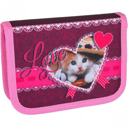 Пенал «Кот в шляпе» 1отд. /2 бок. клапана,  20*13,5*3см «LEADER»
