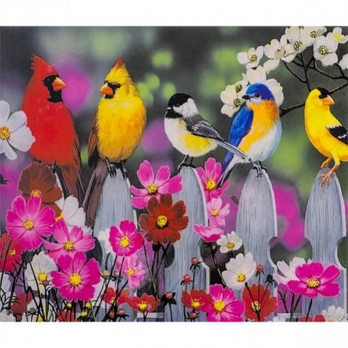 "Картина по номерам ""Яркие птички"" 40*50см"