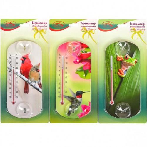 Термометр оконный на на присосках 20*9см